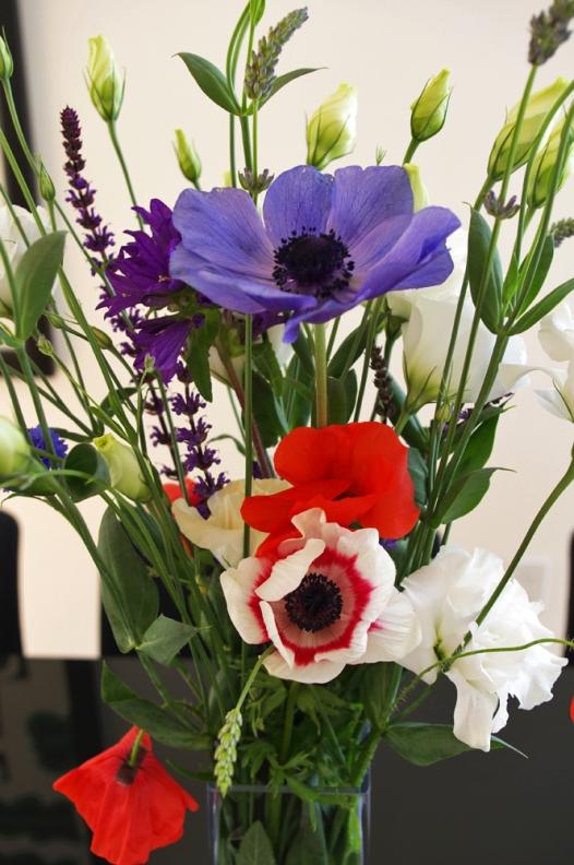 anemones ii