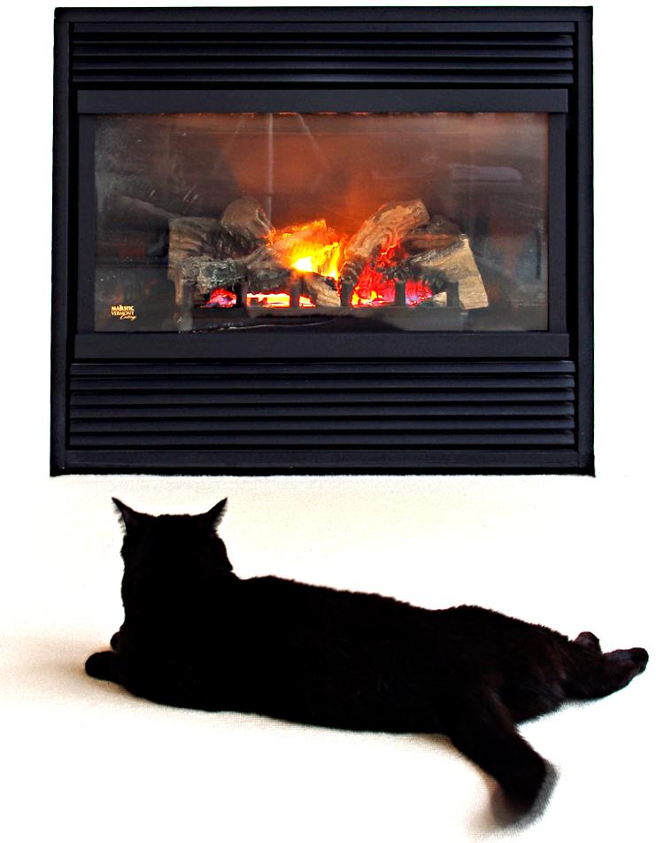 warmth vi