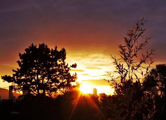 sunrise 3.5.16