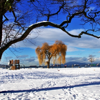 Kits Beach Snow i